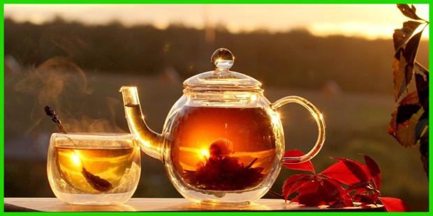 Red Tea Detox Ingredients